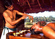 Expert Ayurvedic Clinical Training